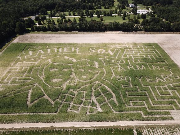 Sahls Father Son Farm Corn Maze image 2017