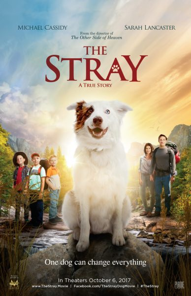 THE-STRAY_Poster-Medium