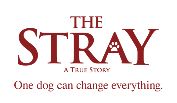 The-Stray-Logo-Burgundy