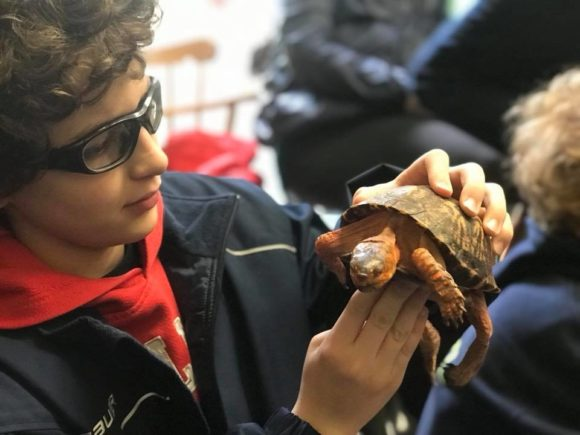 Teen with a turtle at the Rancocas Nature Center