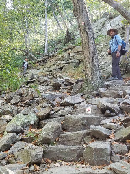 Mount Tammany hike of the Kittatinny Mountains