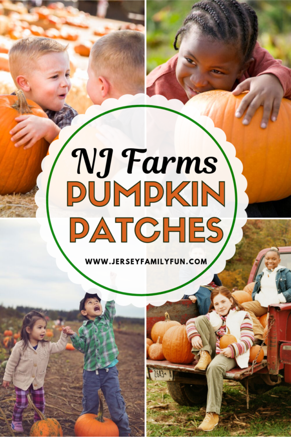 New Jersey farms with pumpkin patches pinterest image