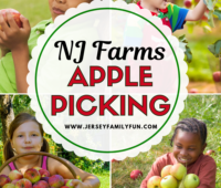 New Jersey farms with apple picking pinterest image