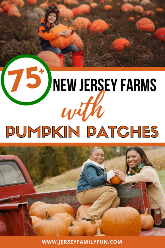 75 farms in New Jersey with pumpkin patches pinterest