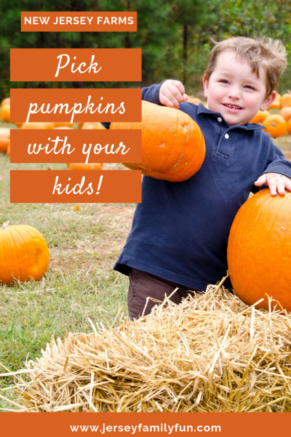 pick pumpkins with your kids at New Jersey farms