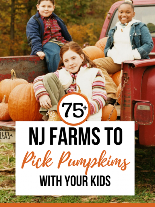New Jersey has over 75 farms to pick pumpkins at
