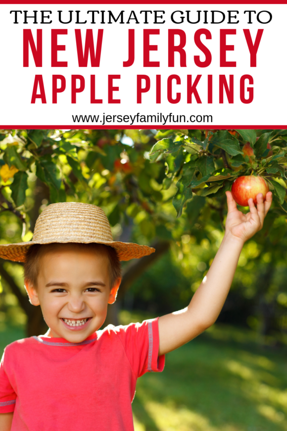 Guide to NJ farms with apple picking orchards