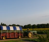 johnsons locust hall farm in South Jersey in Burlington County