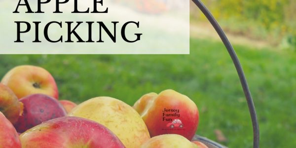 The Best Spots for New Jersey Apple Picking