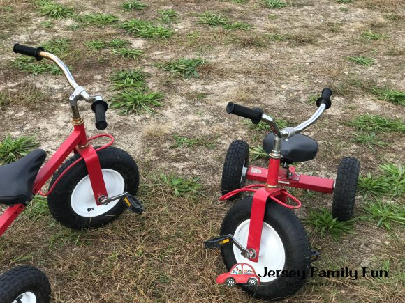 Kids can ride tricycles around a track at the Sahl''s Father Son Farm in Galloway