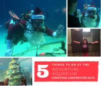 5 Things to do at the Adventure Aquarium Christmas Underwater Days