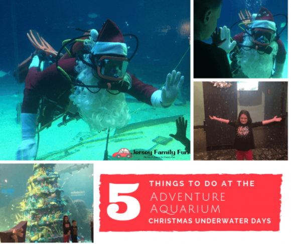5 Things to do at the Adventure Aquarium Christmas Underwater Days