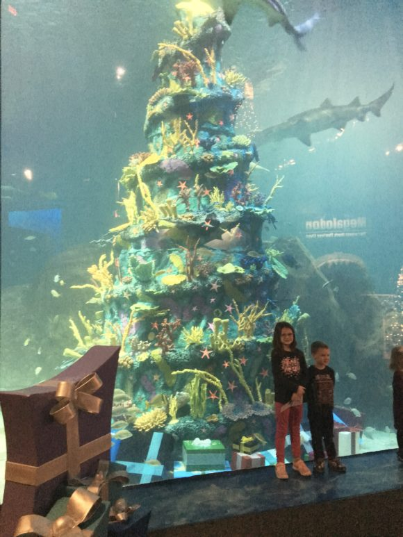 Adventure Aquarium Christmas Underwater Days underwater christmas tree is the largest underwater Christmas tree