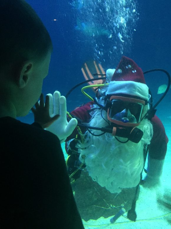 Pose with Scuba Santa at Adventure Aquarium Christmas Underwater Days