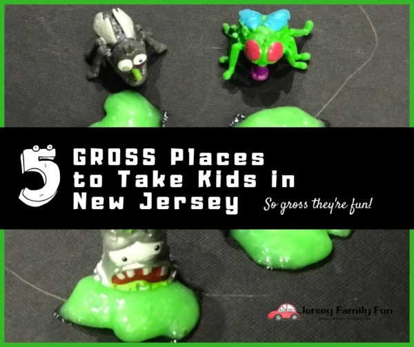Gross places can be fun for kids and we're sharing 5 GROSS Places to take Kids in New Jersey