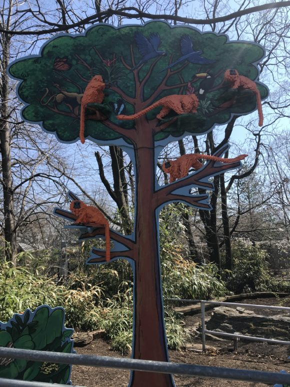 The Philadelphia Zoo Lego Creaturs of Habitat golden lion tamarins