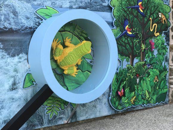 The Philadelphia Zoo Lego Creaturs of Habitat Harlequin Frog