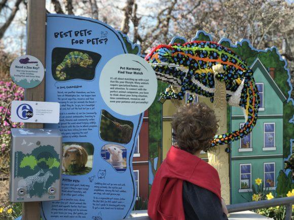 The Philadelphia Zoo Lego Creaturs of Habitat camelion