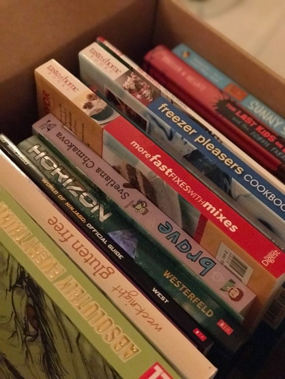 Some of the books we bought at last year's Scholastic Book Fairs warehouse sale in New Jersey.