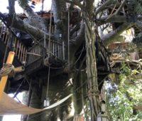 The backside of the secret playground at Disneyland.