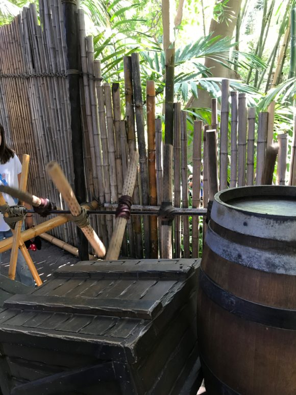 The spinning instrument at Tarzan's Treehouse.