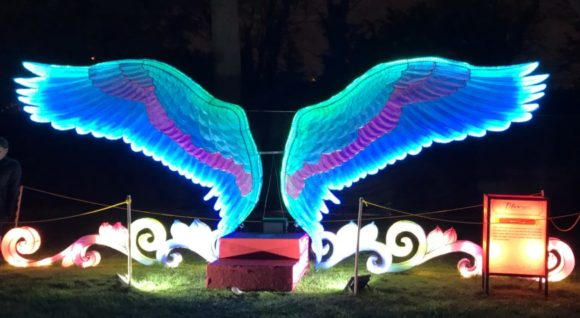 The angel wings lantern at the Philadelphia Chinese Lantern Festival.