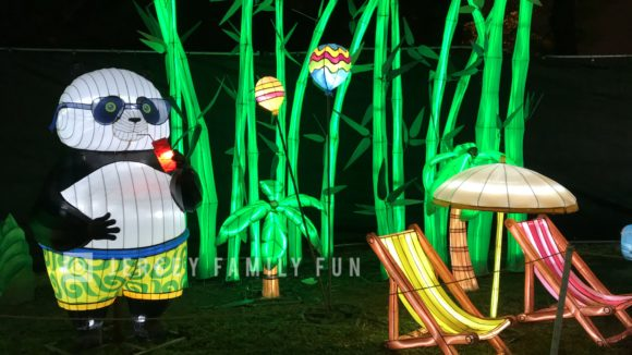 One of the animated lanterns at the Philadelphia Chinese Lantern Festival is the panda sipping a drink.