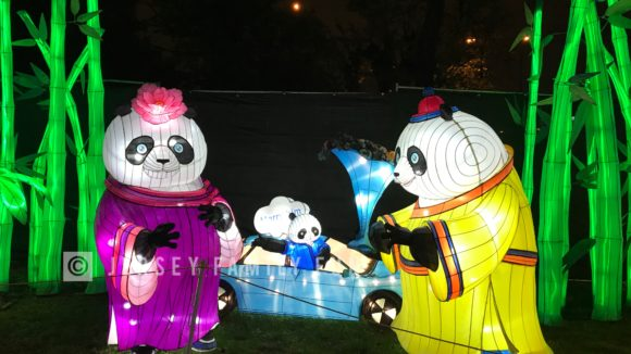Pandas with car lantern at the Philadelphia Chinese Lantern Festival