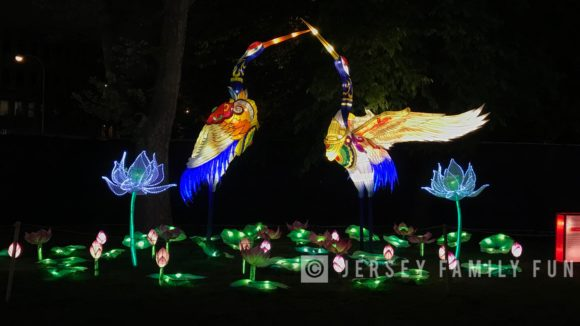 Fairy Cranes at the Philadelphia Chinese Lantern Festival