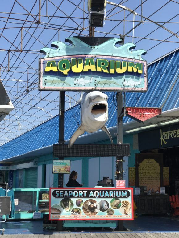 Seaport Aquarium on the Wildwood Boardwalk in Wildwood