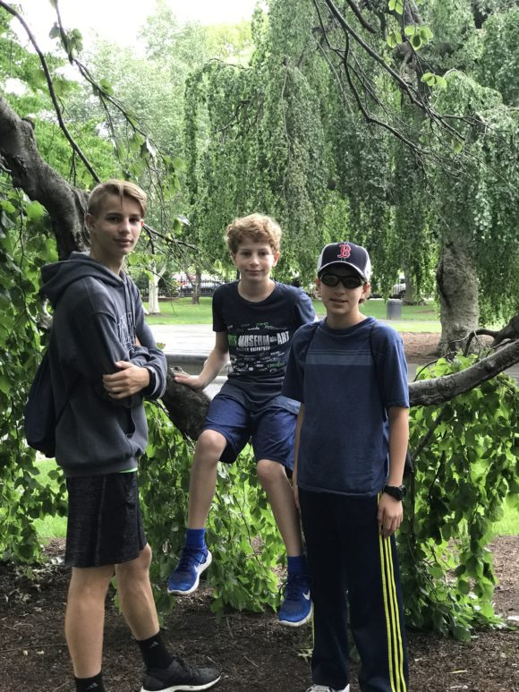 boys with tree in Boston Public Garden