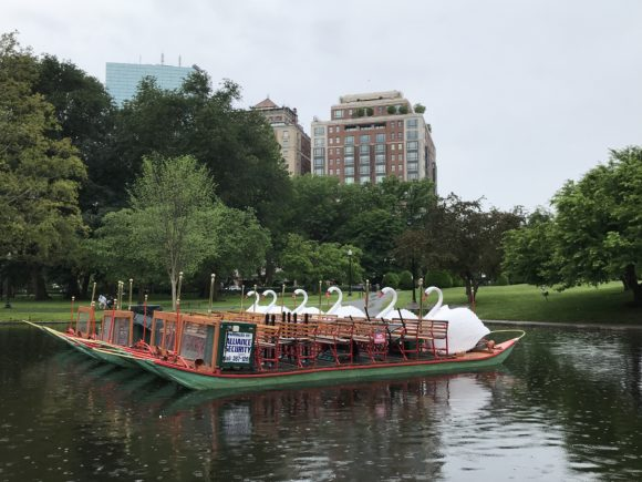 Swan Boat at Boston Public Garden floating on the water