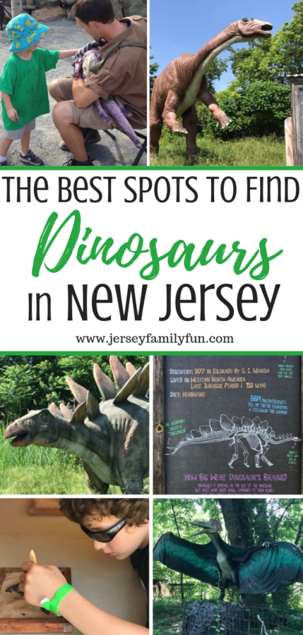 The best spots to find dinosaurs in New Jersey pinterest image