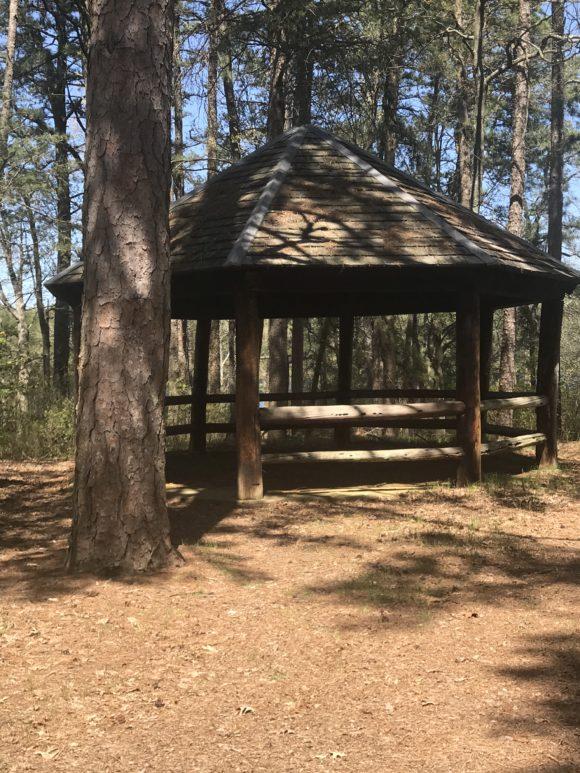 Gazebo on Parvin State Park hiking trails