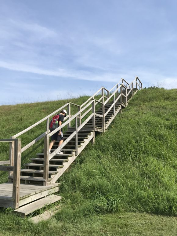 Stairs on grassy hill