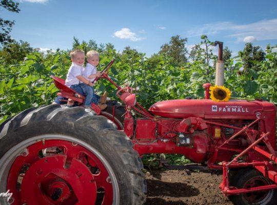 Johnson's Locust Hall Farm Fall Harvest Days