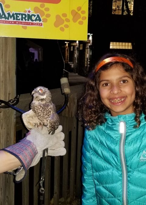 Girl with Bonita an owl at ZooAmerica at Hersheypark.