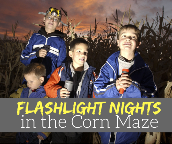 Flashlight Nights in the Corn Maze in Galloway NJ