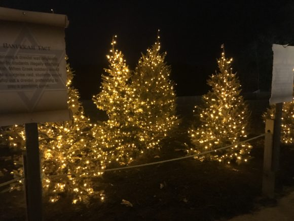lighted Christmas trees at Six Flags Great Adventure in Jackson New Jersey