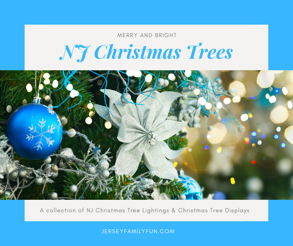 The Best Christmas Trees to See in New Jersey horizontal image