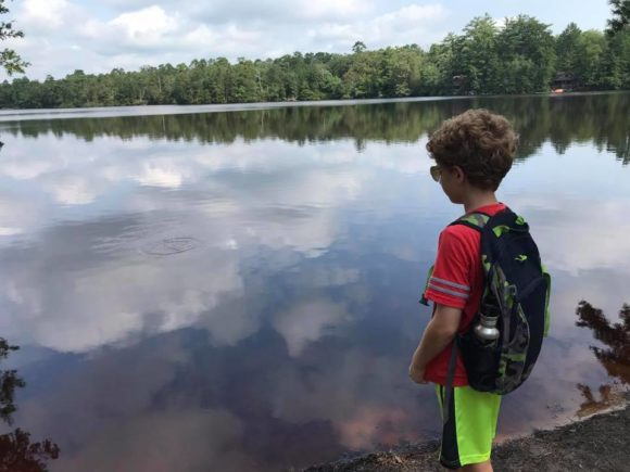 Wharton State Park ~ Atsion boy looks at lake from the edge of the hiking trail