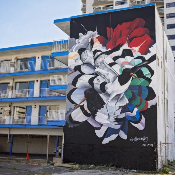 Atlantic City mural Oystercatchers by FELIPE ORTIZ