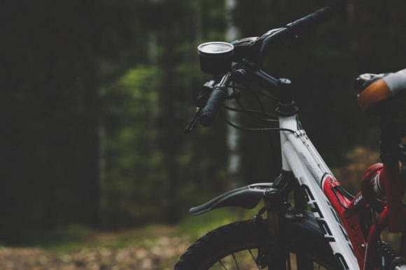 a portion of a mountain bike in the forest Photo by Daniel Spase