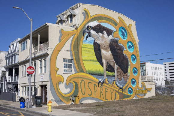 EVAN LOVETT NJ Osprey Project mural in Atlantic City