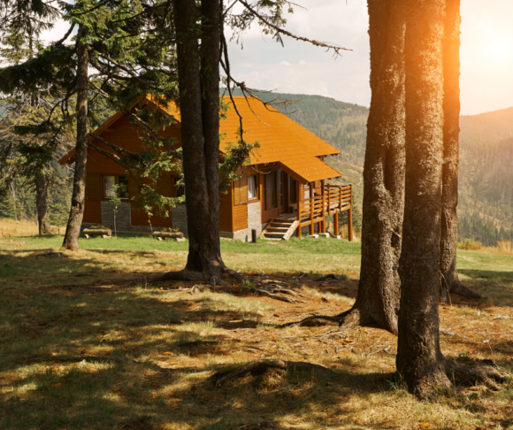 New Jersey cabin rentals in the woods