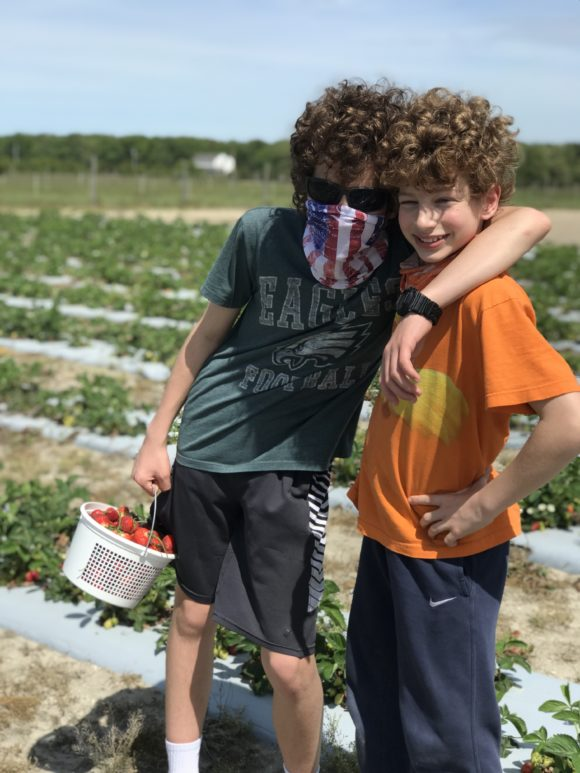 Two boys with a basket of strawberries picked from the Sahls Father Son Farm in Galloway, New Jersey