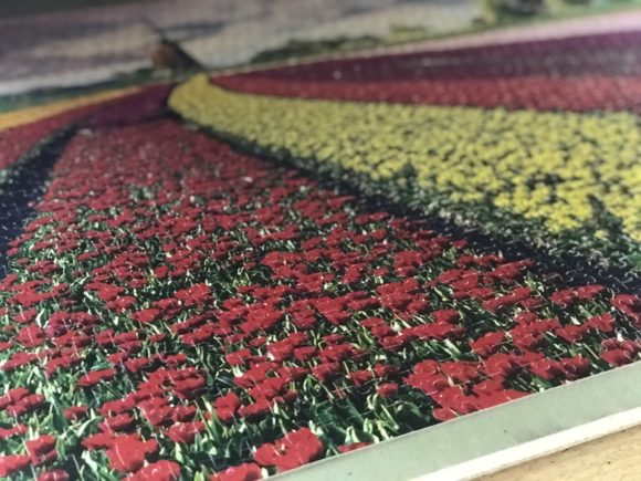 Netherlands puzzle with tulip fields and a windmill