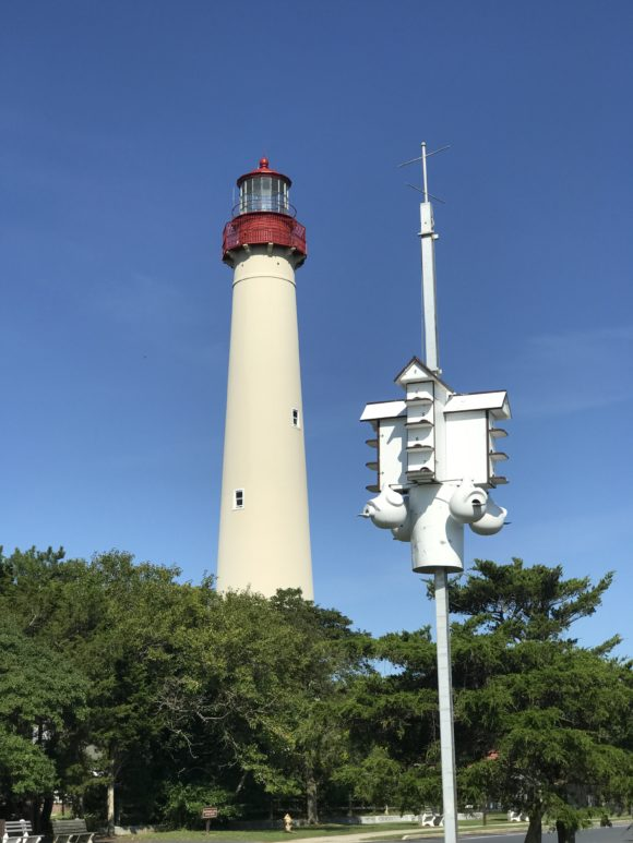 Cape May Point lighthouse at Cape May Point State Park