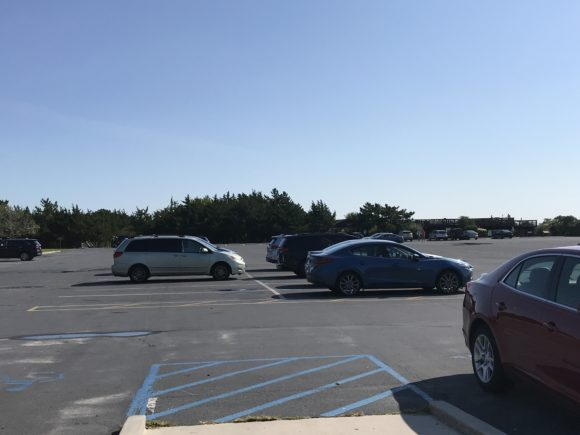 Parking lot at Cape May Point State Park