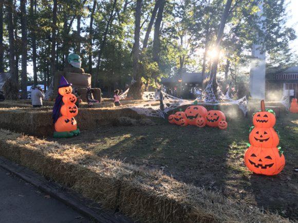 Hay maze for Great Adventure Halloween